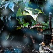 In a Distant Forest Somewhere EP