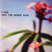 Into The Desert Blue