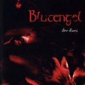 Live Lines (disc 2: Audio CD)
