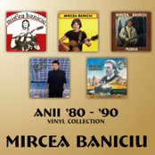 Anii 80-90 - Vinyl Collection ('80s -'90s - Vinyl Collection)
