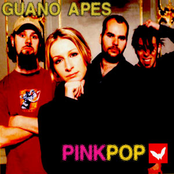 album Pinkpop 2000 by Guano Apes
