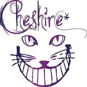 Cheshire*