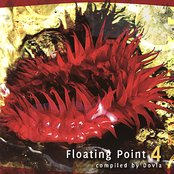 Floating Point 4