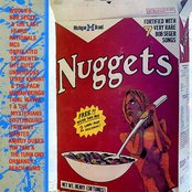 Michigan Nuggets