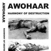 Harmony Of Destruction (demo I 2008)