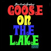 Goose On the Lake 2007