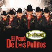 El Papá De Los Pollitos