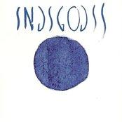 INDIGODIS