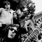 The Brian Jonestown Massacre