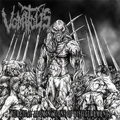 Surgical Abominations of Disfigurement