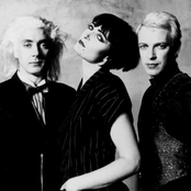 Siouxsie and the Banshees setlists
