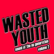 Wasted Youth, Vol. 2 (Music of the Nu Generation)
