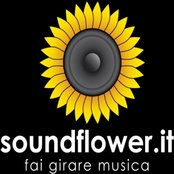 Experiments from Soundflower Community