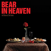 album Red Bloom Of The Boom by Bear in Heaven