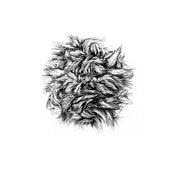 "Bark Of A Cedar / I Fee Nthg 7"" - Single"