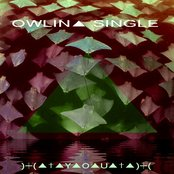 OWLIN▲ SINGLE