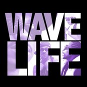 The Wave Life