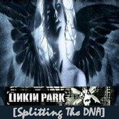 Splitting the DNA (disc 1)