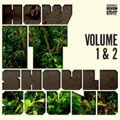 How It Should Sound (Volume 1 & 2)