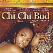 Chi Chi Bud