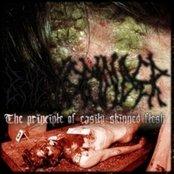 The principle of easily skinned flesh