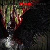 Fallen Angel EP