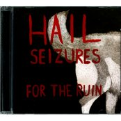 Hail Seizures -  for the ruin  (2010)