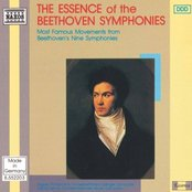 BEETHOVEN: The Essence of the Beethoven Symphonies