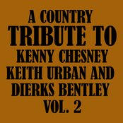A Country Tribute to Kenny Chesney, Keith Urban and Dierks Bentley Vol. 2