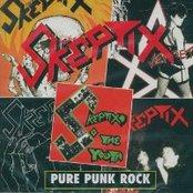 Pure Punk Rock