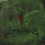 W4 - The Green Album