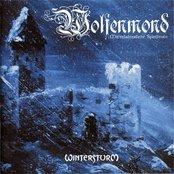 Wintersturm (disc 1)
