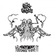 album Any Way You Choose To Give It by The Black Ghosts