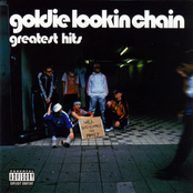 Roller Disco by Goldie Lookin' Chain