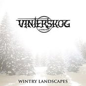 Wintry Landscapes
