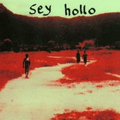 Sey Hollo