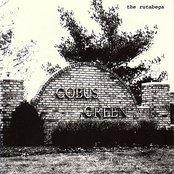 Cobus Green