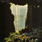 Canopy EP