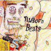 Stubborn Beats