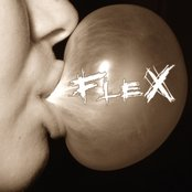 www.flex.art.pl