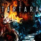 HSS005:Tartara