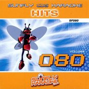 Sunfly Hits, Vol. 80