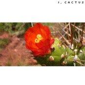 I, Cactus