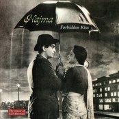 Forbidden Kiss: The Music Of S.D. Burman