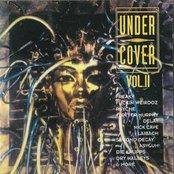 Undercover, Volume 2