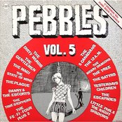 Pebbles, Volume 5