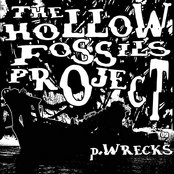 The Hollow Fossils Project