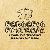 Hedgehog Hysteria