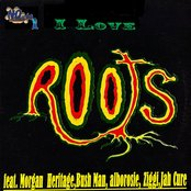 I Love Roots