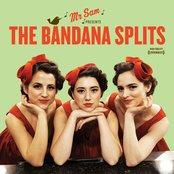 Mr. Sam Presents The Bandana Splits